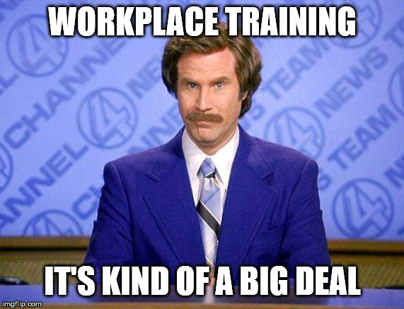 anchorman news update | WORKPLACE TRAINING IT'S KIND OF A BIG DEAL | image tagged in anchorman news update | made w/ Imgflip meme maker