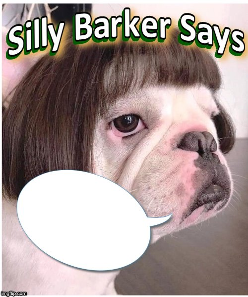 Silly Barker Says | image tagged in silly barker says | made w/ Imgflip meme maker