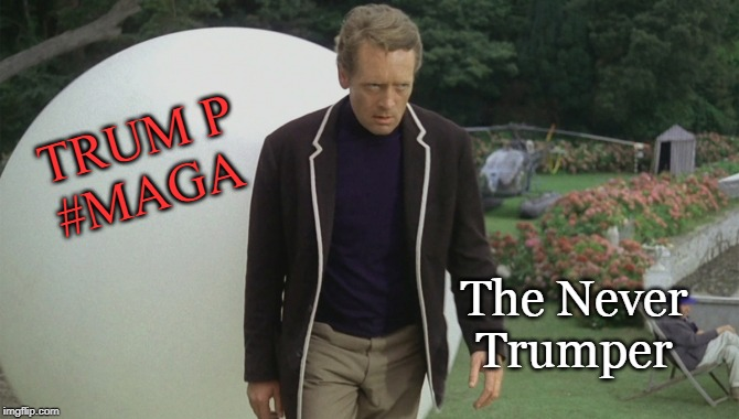 The Never Trumper |  TRUM P #MAGA; The Never Trumper | image tagged in donald trump,maga,conservatives,scifi,funny memes | made w/ Imgflip meme maker