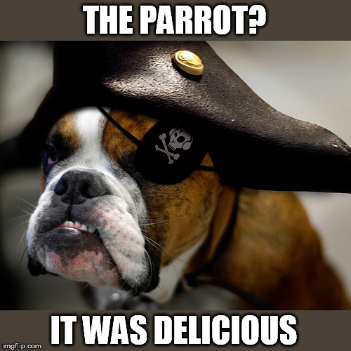 THE PARROT? IT WAS DELICIOUS | made w/ Imgflip meme maker