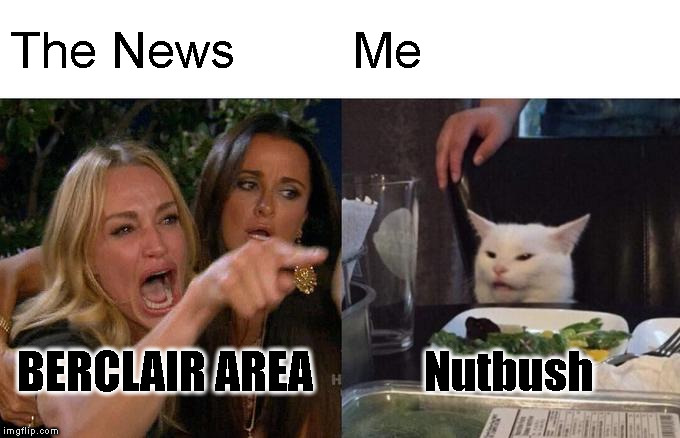 Woman Yelling At Cat Meme | The News Me BERCLAIR AREA Nutbush | image tagged in memes,woman yelling at a cat | made w/ Imgflip meme maker