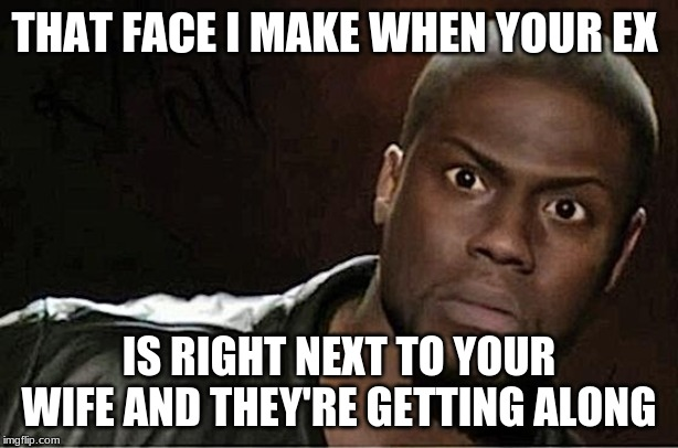 Kevin Hart Meme | THAT FACE I MAKE WHEN YOUR EX IS RIGHT NEXT TO YOUR WIFE AND THEY'RE GETTING ALONG | image tagged in memes,kevin hart | made w/ Imgflip meme maker