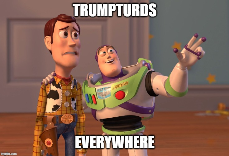 X, X Everywhere | TRUMPTURDS EVERYWHERE | image tagged in memes,x x everywhere | made w/ Imgflip meme maker