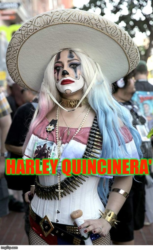 Harley |  HARLEY QUINCINERA' | image tagged in harley | made w/ Imgflip meme maker
