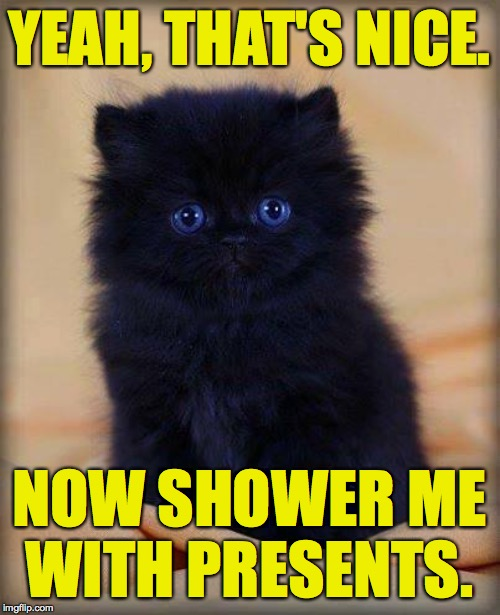 insanely cute kitten | YEAH, THAT'S NICE. NOW SHOWER ME WITH PRESENTS. | image tagged in insanely cute kitten | made w/ Imgflip meme maker