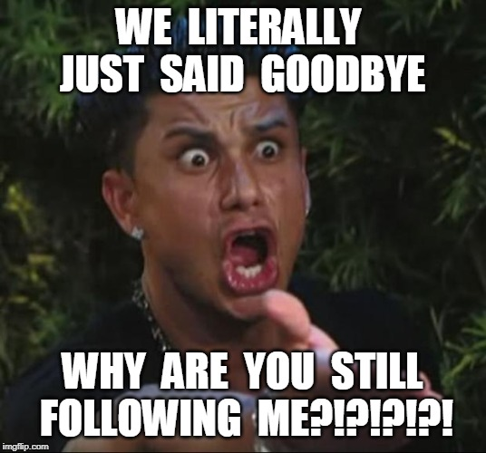 DJ Pauly D | WE  LITERALLY  JUST  SAID  GOODBYE WHY  ARE  YOU  STILL  FOLLOWING  ME?!?!?!?! | image tagged in memes,dj pauly d | made w/ Imgflip meme maker