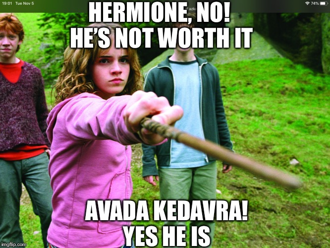 Avada kedavra meme | HERMIONE, NO! HE'S NOT WORTH IT AVADA KEDAVRA!YES HE IS | image tagged in avada kedavra,hermione granger,harry potter | made w/ Imgflip meme maker