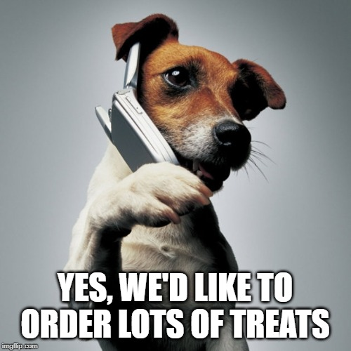 Dog Phone | YES, WE'D LIKE TO ORDER LOTS OF TREATS | image tagged in dog phone | made w/ Imgflip meme maker
