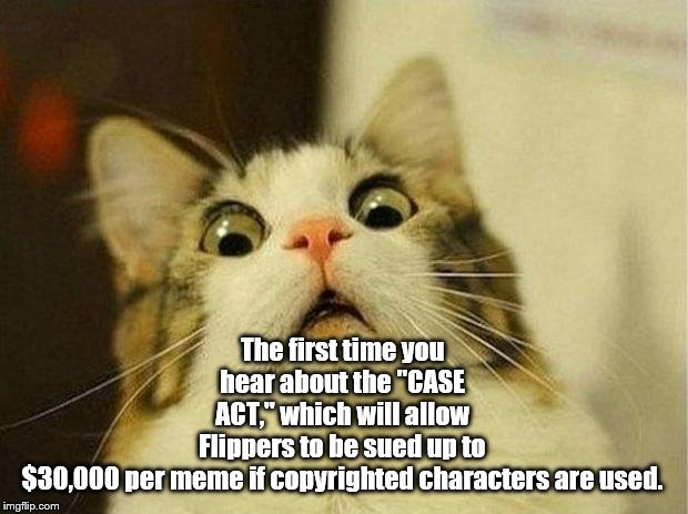 "Uh-oh | The first time you hear about the ""CASE ACT,"" which will allow Flippers to be sued up to $30,000 per meme if copyrighted characters are used 