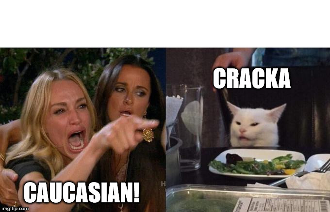 Woman Yelling At Cat Meme | CAUCASIAN! CRACKA | image tagged in memes,woman yelling at a cat,southern,southern slang | made w/ Imgflip meme maker