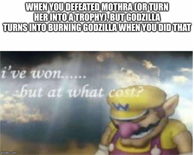 WHEN YOU DEFEATED MOTHRA (OR TURN HER INTO A TROPHY), BUT GODZILLA TURNS INTO BURNING GODZILLA WHEN YOU DID THAT | image tagged in i won but at what cost | made w/ Imgflip meme maker