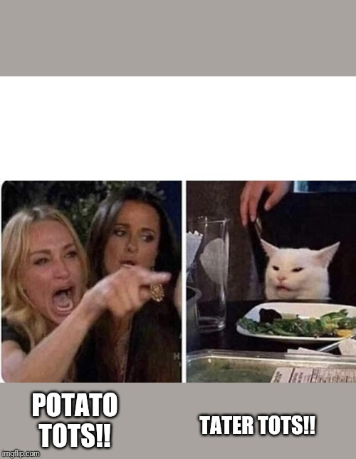 Angry Woman and Cat | POTATO TOTS!! TATER TOTS!! | image tagged in angry woman and cat | made w/ Imgflip meme maker
