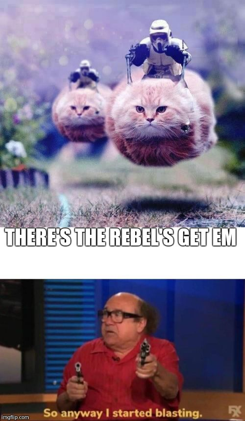 THERE'S THE REBEL'S GET EM | image tagged in storm trooper cats,so anyway i started blasting | made w/ Imgflip meme maker