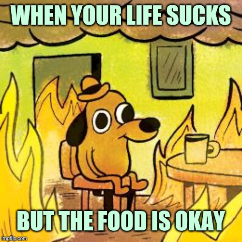 This is fine | WHEN YOUR LIFE SUCKS BUT THE FOOD IS OKAY | image tagged in dog in burning house,this is fine dog | made w/ Imgflip meme maker