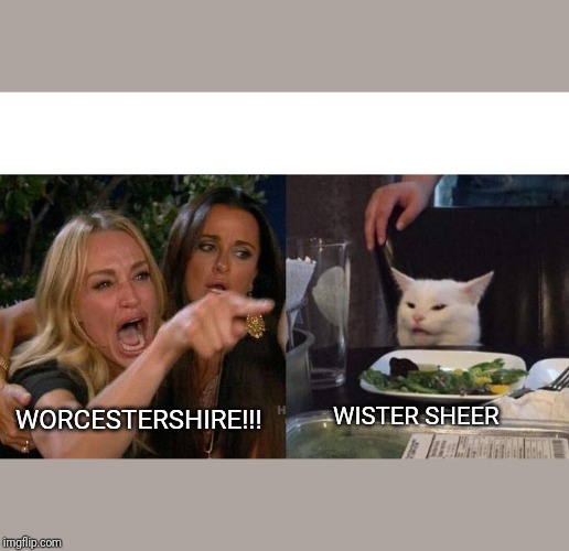 Woman Yelling At Cat Meme | WORCESTERSHIRE!!! WISTER SHEER | image tagged in memes,woman yelling at a cat | made w/ Imgflip meme maker