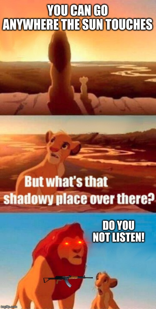 Simba Shadowy Place Meme | YOU CAN GO ANYWHERE THE SUN TOUCHES DO YOU NOT LISTEN! | image tagged in memes,simba shadowy place | made w/ Imgflip meme maker