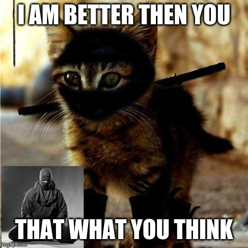 Ninja Cat | I AM BETTER THEN YOU THAT WHAT YOU THINK | image tagged in ninja cat | made w/ Imgflip meme maker