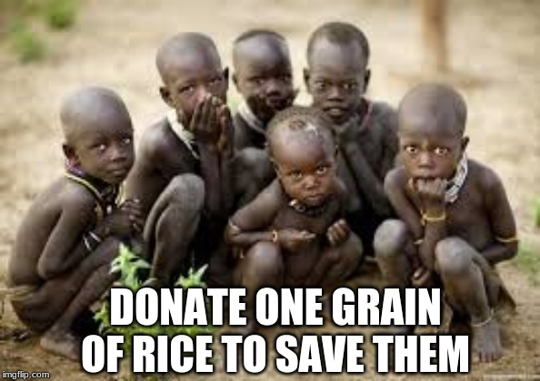 Please help them | DONATE ONE GRAIN OF RICE TO SAVE THEM | image tagged in so true memes,memes | made w/ Imgflip meme maker