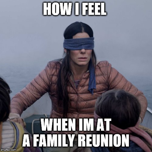 Bird Box Meme | HOW I FEEL WHEN IM AT A FAMILY REUNION | image tagged in memes,bird box | made w/ Imgflip meme maker