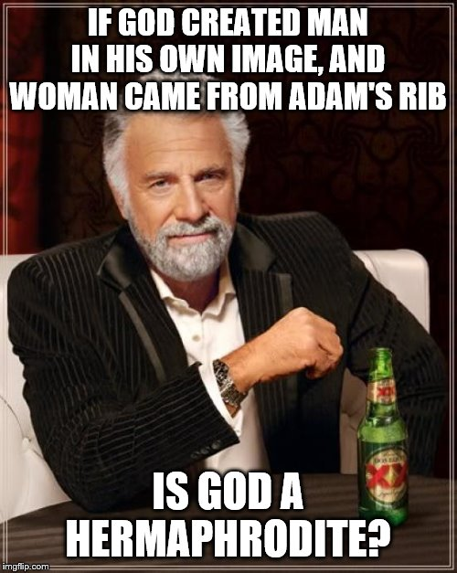 The Most Interesting Man In The World Meme | IF GOD CREATED MAN IN HIS OWN IMAGE, AND WOMAN CAME FROM ADAM'S RIB IS GOD A HERMAPHRODITE? | image tagged in memes,the most interesting man in the world | made w/ Imgflip meme maker