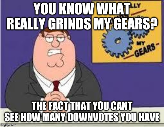 You know what really grinds my gears | YOU KNOW WHAT REALLY GRINDS MY GEARS? THE FACT THAT YOU CANT SEE HOW MANY DOWNVOTES YOU HAVE | image tagged in you know what really grinds my gears | made w/ Imgflip meme maker