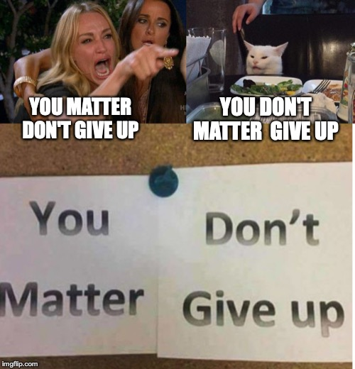 YOU MATTER DON'T GIVE UP YOU DON'T MATTER  GIVE UP | image tagged in lady yelling at cat | made w/ Imgflip meme maker