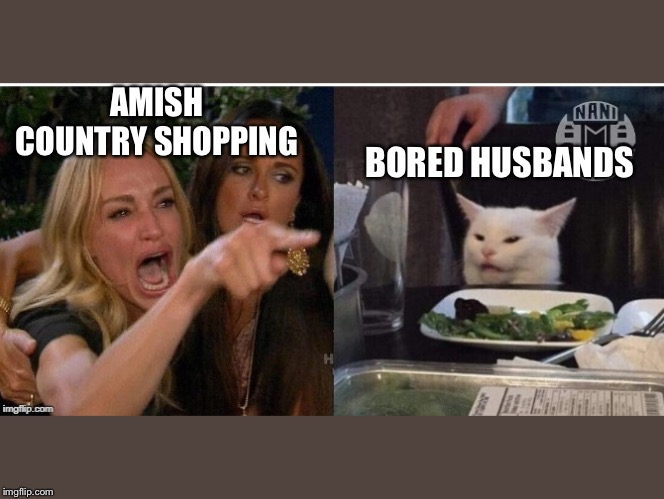 white cat table |  AMISH COUNTRY SHOPPING; BORED HUSBANDS | image tagged in white cat table | made w/ Imgflip meme maker
