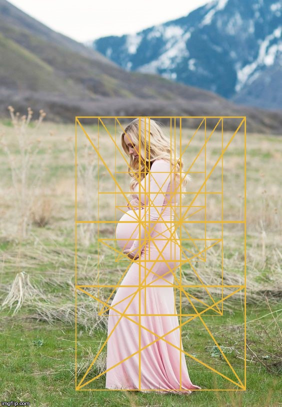 A pregnant woman with a Golden Ratio overlay. | image tagged in the golden ratio,pregnant,woman,geometry,life,the human body | made w/ Imgflip meme maker