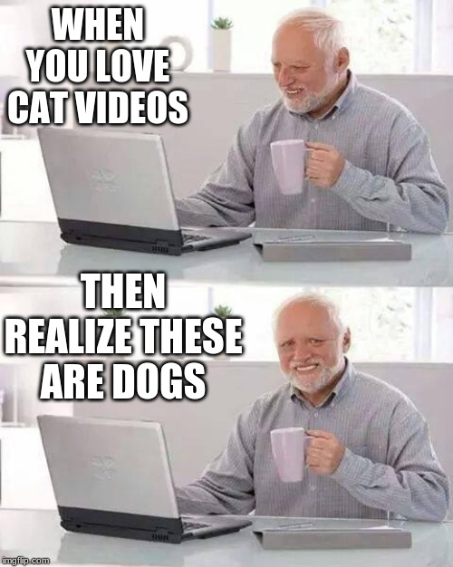 Hide the Pain Harold Meme | WHEN YOU LOVE CAT VIDEOS THEN REALIZE THESE ARE DOGS | image tagged in memes,hide the pain harold | made w/ Imgflip meme maker