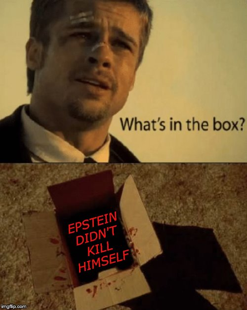 What's in the box? | EPSTEIN DIDN'T KILL HIMSELF | image tagged in seven,brad pitt,jeffrey epstein | made w/ Imgflip meme maker