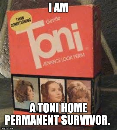 Toni Perm | I AM A TONI HOME PERMANENT SURVIVOR. | image tagged in perm,toni,survivor | made w/ Imgflip meme maker