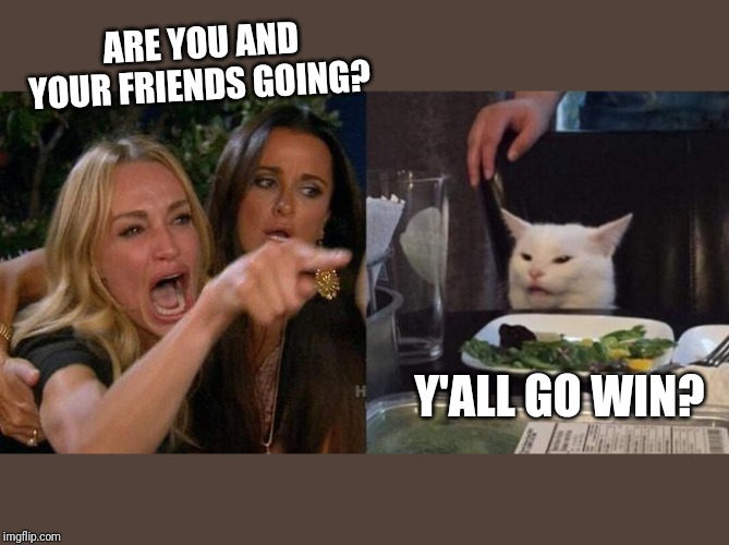 Girl screaming at cat | ARE YOU AND YOUR FRIENDS GOING? Y'ALL GO WIN? | image tagged in girl screaming at cat | made w/ Imgflip meme maker
