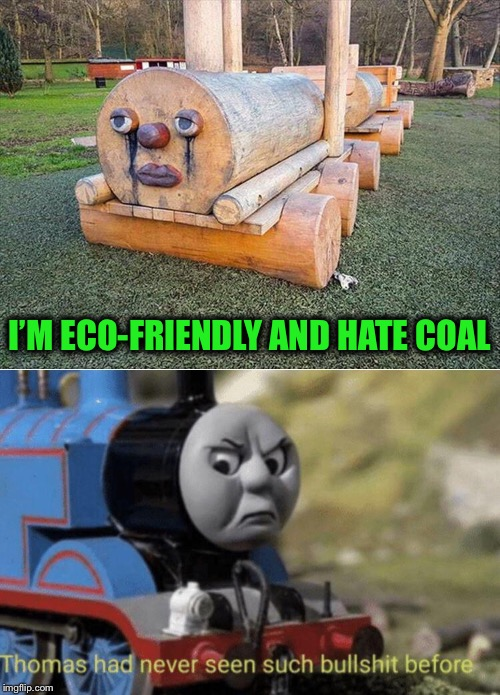 That there is a woody goody goody. | I'M ECO-FRIENDLY AND HATE COAL | image tagged in thomas had never seen such bullshit before,environmentalist,memes,funny | made w/ Imgflip meme maker