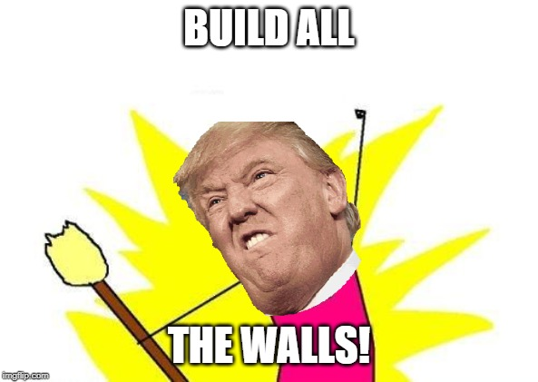 X All The Y Meme | BUILD ALL THE WALLS! | image tagged in memes,x all the y | made w/ Imgflip meme maker