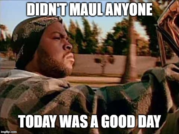 Today Was A Good Day Meme | DIDN'T MAUL ANYONE TODAY WAS A GOOD DAY | image tagged in memes,today was a good day | made w/ Imgflip meme maker