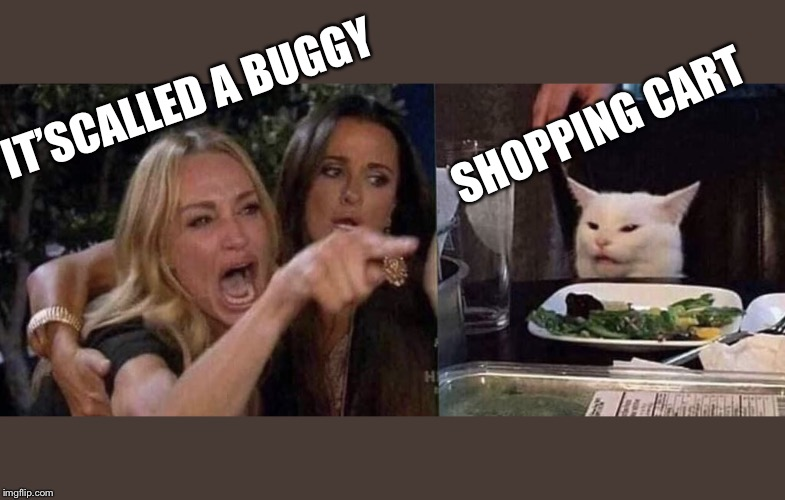 woman yelling at cat | IT'SCALLED A BUGGY SHOPPING CART | image tagged in woman yelling at cat | made w/ Imgflip meme maker