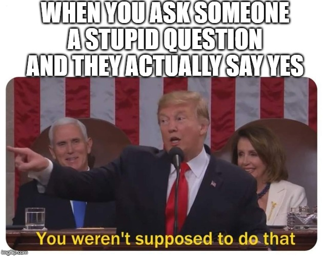 You weren't supposed to do that | WHEN YOU ASK SOMEONE A STUPID QUESTION AND THEY ACTUALLY SAY YES | image tagged in you weren't supposed to do that | made w/ Imgflip meme maker
