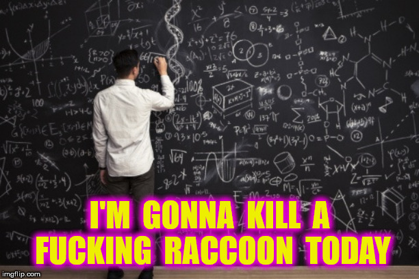I'M  GONNA  KILL  A  F**KING  RACCOON  TODAY | made w/ Imgflip meme maker