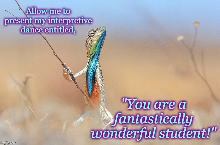 "Lizard | Allow me to present my interpretive dance entitled, ""You are a fantastically wonderful student!"" 