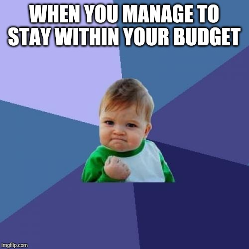 Success Kid Meme | WHEN YOU MANAGE TO STAY WITHIN YOUR BUDGET | image tagged in memes,success kid | made w/ Imgflip meme maker