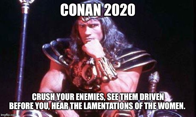 Conan | CONAN 2020 CRUSH YOUR ENEMIES, SEE THEM DRIVEN BEFORE YOU, HEAR THE LAMENTATIONS OF THE WOMEN. | image tagged in conan | made w/ Imgflip meme maker