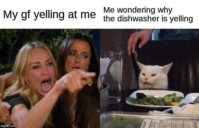 Woman Yelling At Cat | My gf yelling at me Me wondering why the dishwasher is yelling | image tagged in memes,woman yelling at a cat | made w/ Imgflip meme maker