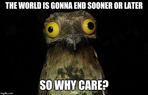 Weird Stuff I Do Potoo Meme | THE WORLD IS GONNA END SOONER OR LATER SO WHY CARE? | image tagged in memes,weird stuff i do potoo | made w/ Imgflip meme maker