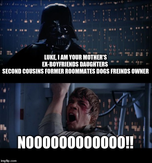 Star Wars No Meme | LUKE, I AM YOUR MOTHER'S EX-BOYFRIENDS DAUGHTERS  SECOND COUSINS FORMER ROOMMATES DOGS FREINDS OWNER NOOOOOOOOOOOO!! | image tagged in memes,star wars no | made w/ Imgflip meme maker