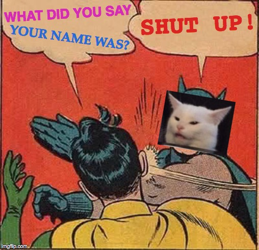 Catman Is BACK, In Cat Form | WHAT DID YOU SAY YOUR NAME WAS? SHUT UP! | image tagged in memes,batman slapping robin,hello my name is,who are you,funny cat memes,angry cat | made w/ Imgflip meme maker
