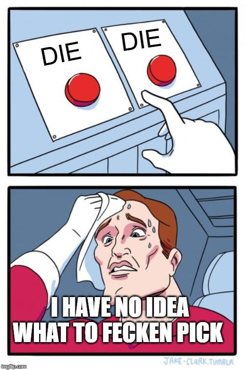 Two Buttons Meme | DIE DIE I HAVE NO IDEA WHAT TO FECKEN PICK | image tagged in memes,two buttons | made w/ Imgflip meme maker