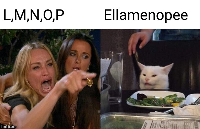 Woman Yelling At Cat Meme | L,M,N,O,P Ellamenopee | image tagged in memes,woman yelling at a cat | made w/ Imgflip meme maker