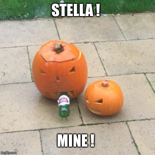 STELLA ! MINE ! | image tagged in stella | made w/ Imgflip meme maker