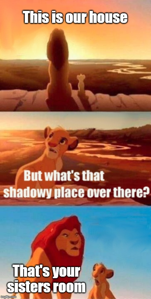 Simba Shadowy Place Meme | This is our house That's your sisters room | image tagged in memes,simba shadowy place | made w/ Imgflip meme maker