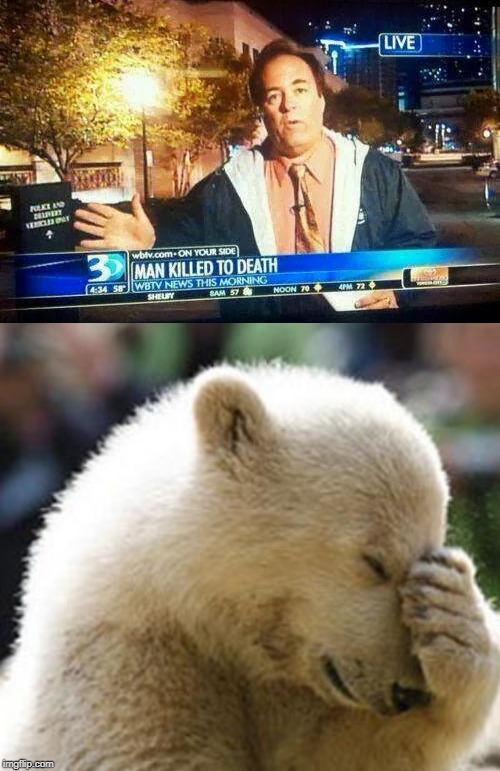 it's a shame that this news station is not from Florida... | image tagged in memes,funny,florida man,facepalm | made w/ Imgflip meme maker